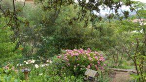Villa Alba Dolce cropped-Alba-Dolce_Studio-11.jpg