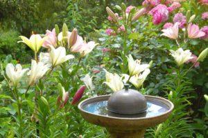 Villa Alba Dolce Appart jardin sud fontaine