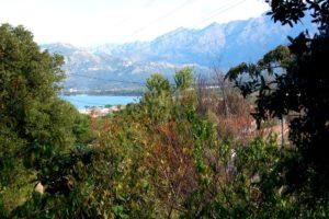 Villa Alba Dolce Appart jardin vue mer
