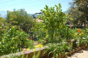 Villa Alba Dolce Appart terrasse 6