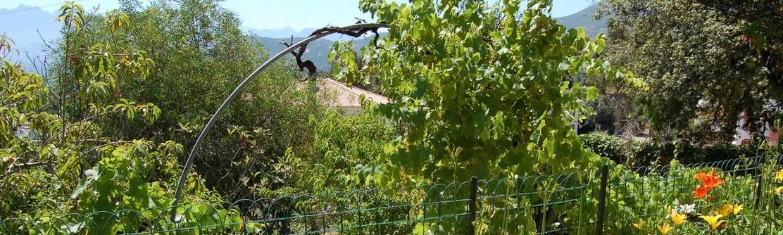 Villa Alba Dolce Témoignages